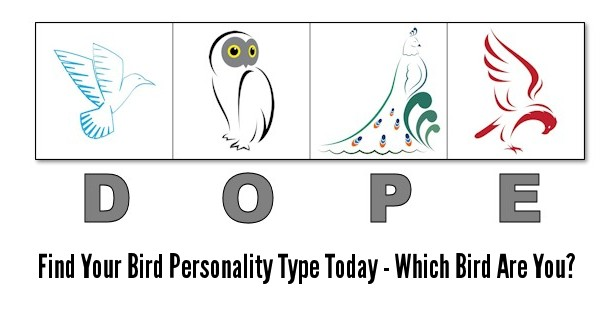 photo relating to Printable Quizzes for Fun named DOPE Chook 4 Temperament Patterns Check (Printable On the web Model)